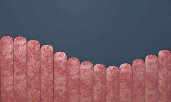 Fototapeten Equalizer Pink Wave on Gray Beispiel rosa und blauer Hintergrund | 3d Fototapeten