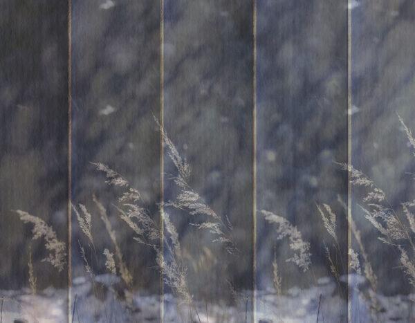 Design Fototapeten Clarity Dark Beispiel blau | fototapete natur