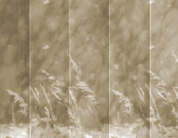 Design Fototapeten Clarity Dark Beispiel gelb-pink | fototapete natur