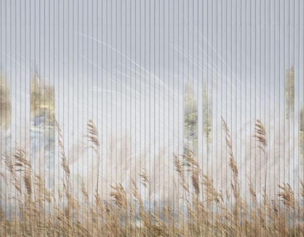 Design Fototapeten Clarity Gold Die Linien | fototapete natur