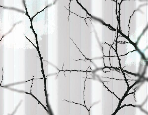 Design Fototapeten Clarity White Beispiel Weiß | fototapete natur