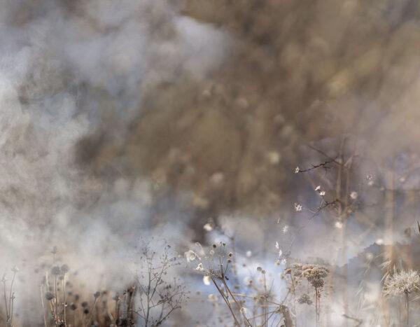 Design Fototapeten Clarity Smoke Beispiel Seife | fototapete badezimmer