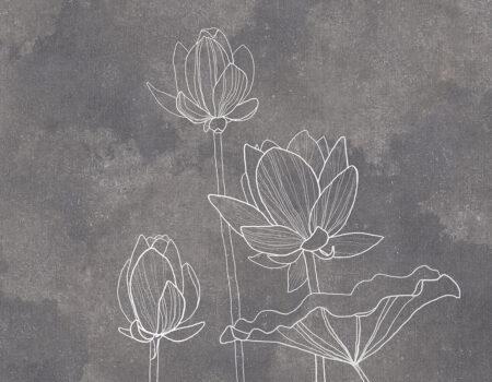 Fototapeten Water Lilly Grey Beispiel graue | tapeten 3d