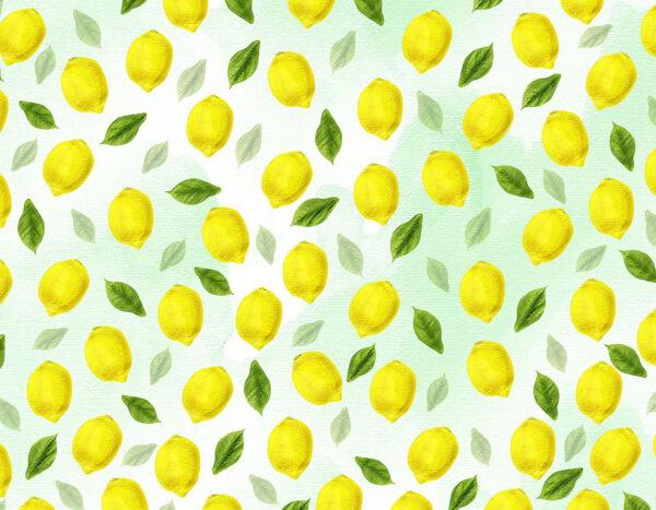 Design Fototapeten Lemons Beispiel hellgrün | fototapete natur