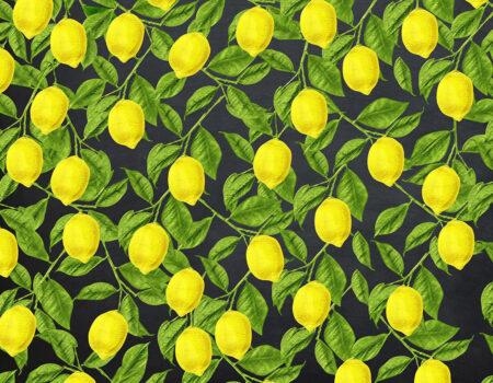 Fototapeten Lemons Beispiel Schwarzer Hintergrund | 3d tapeten