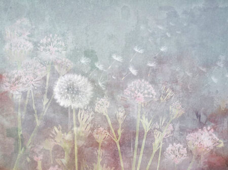 Fototapeten Watercolor Seeds Beispiel grau | fototapete natur