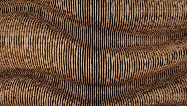 Kaufen Fototapeten Wood Butternut Beispiel braun | fototapete wald 3d