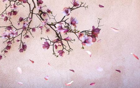 DesignerFototapeten Autunno Gold Pink Beispiel   fototapete natur