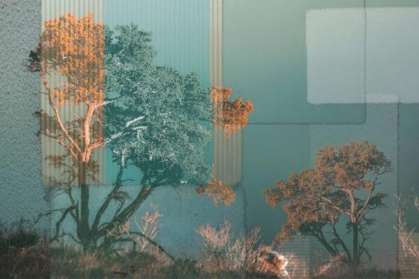 Kaufen Designer Fototapeten Calmness Gold Beispiel| 3d tapete