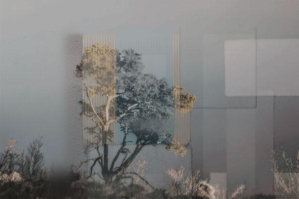 Design Fototapeten Calmness Grau Beispiel | 3d tapete badezimmer