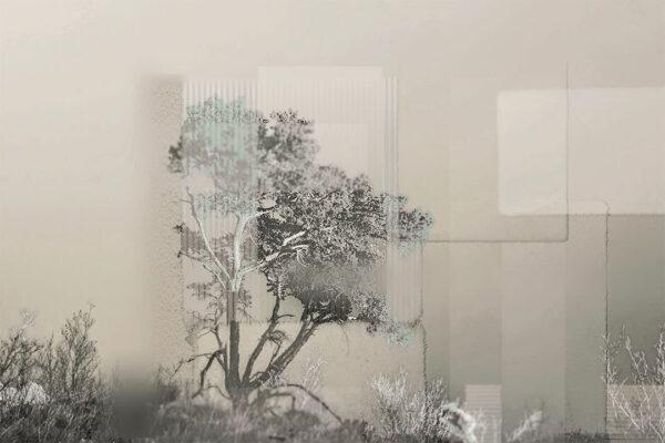 Design Fototapeten Calmness Beispiel grüne Tönung | 3d tapete badezimmer