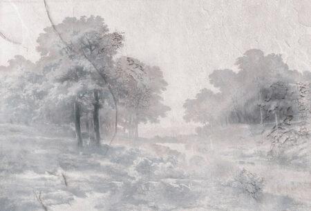 Designer Fototapeten Armonia in the Fog Beispiel grau   3d tapeten