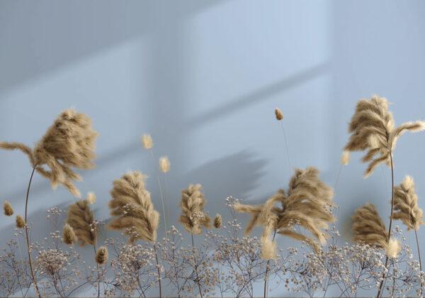 Kaufen Designer Fototapeten Prejudice Beispiel blau | 3d tapete