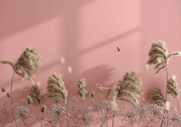 Kaufen Designer Fototapeten Prejudice Beispiel rosa | 3d tapete