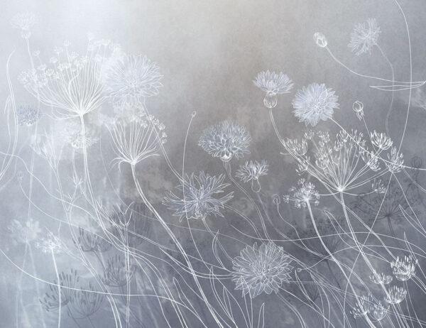 Design Fototapeten Vento Beispiel grau Farbverlauf | fototapete natur