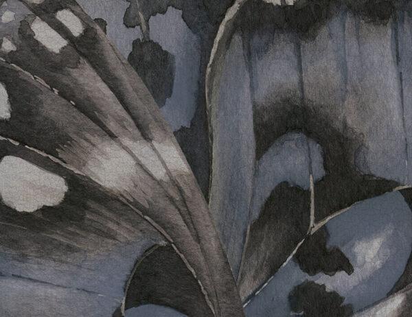 Kaufen Fototapeten Farfalla Beispiel Blautönung   3d tapete