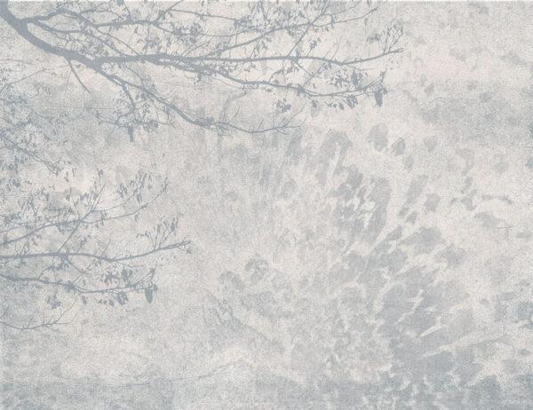 Design Fototapeten Ruhe Beispiel grau   fototapete natur