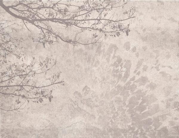 Design Fototapeten Ruhe Beispiel dunkler Pfirsich   fototapete natur