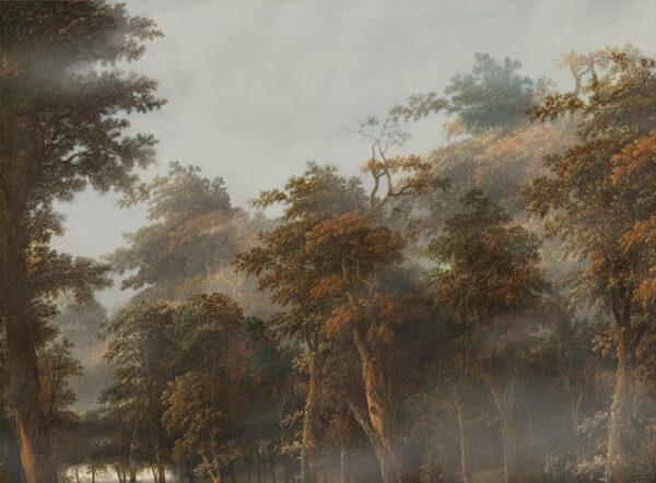 Design Fototapeten Bosco autunnale Beispiel Nebel | fototapete natur