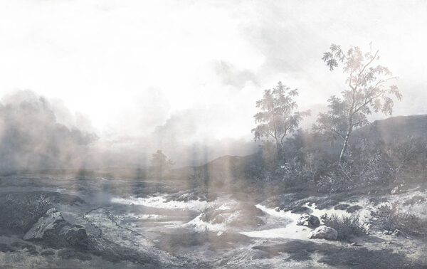 Design Fototapeten Vigas Beispiel grau   fototapete natur