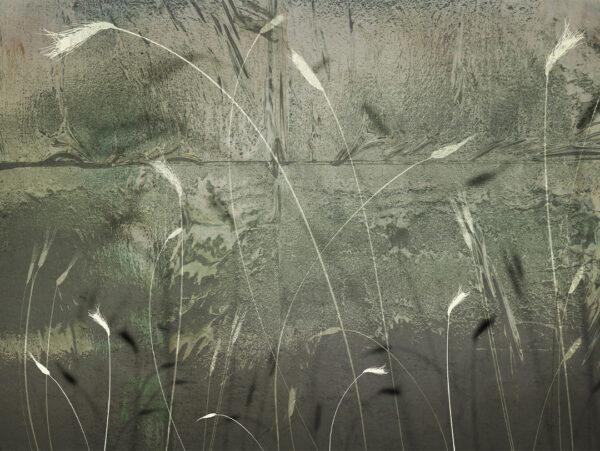 Design Fototapeten Svendborg Beispiel raue Farbe | fototapete natur